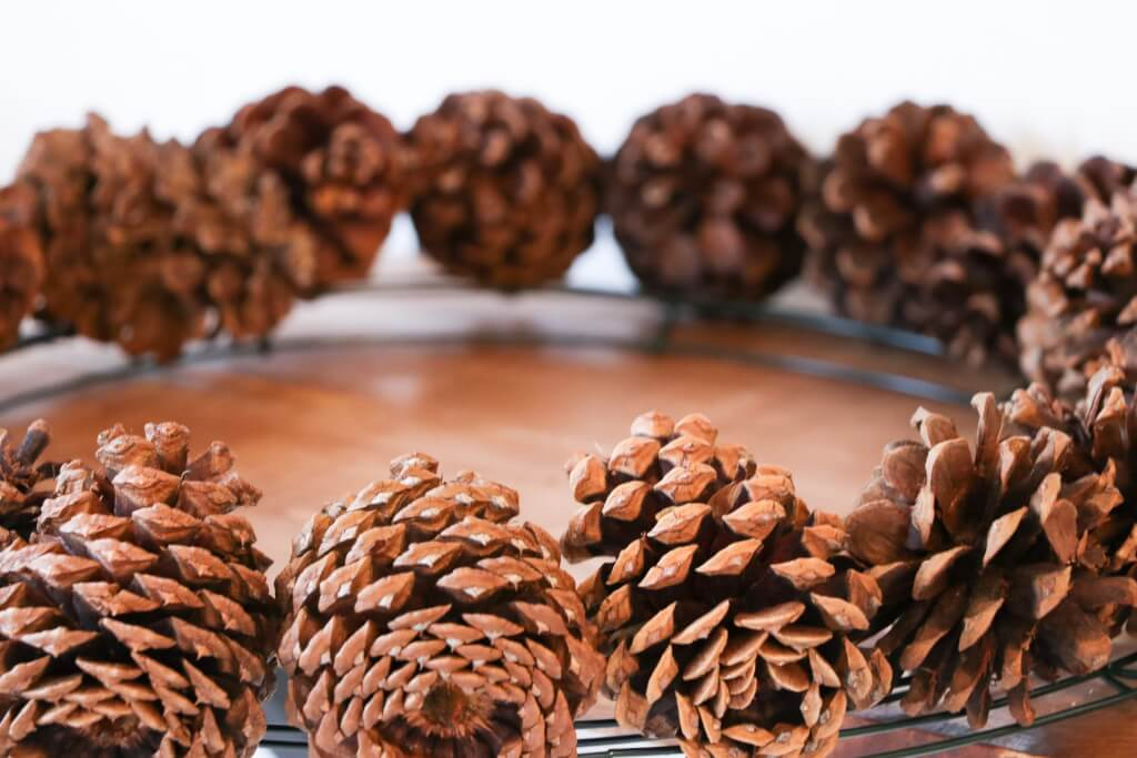 pine cone christmas wreath- arrange pine cones