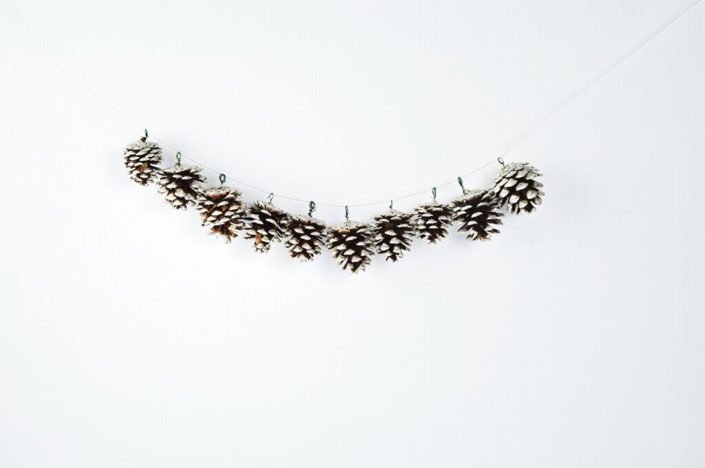 christmas pine cone crafts- pine cone garland