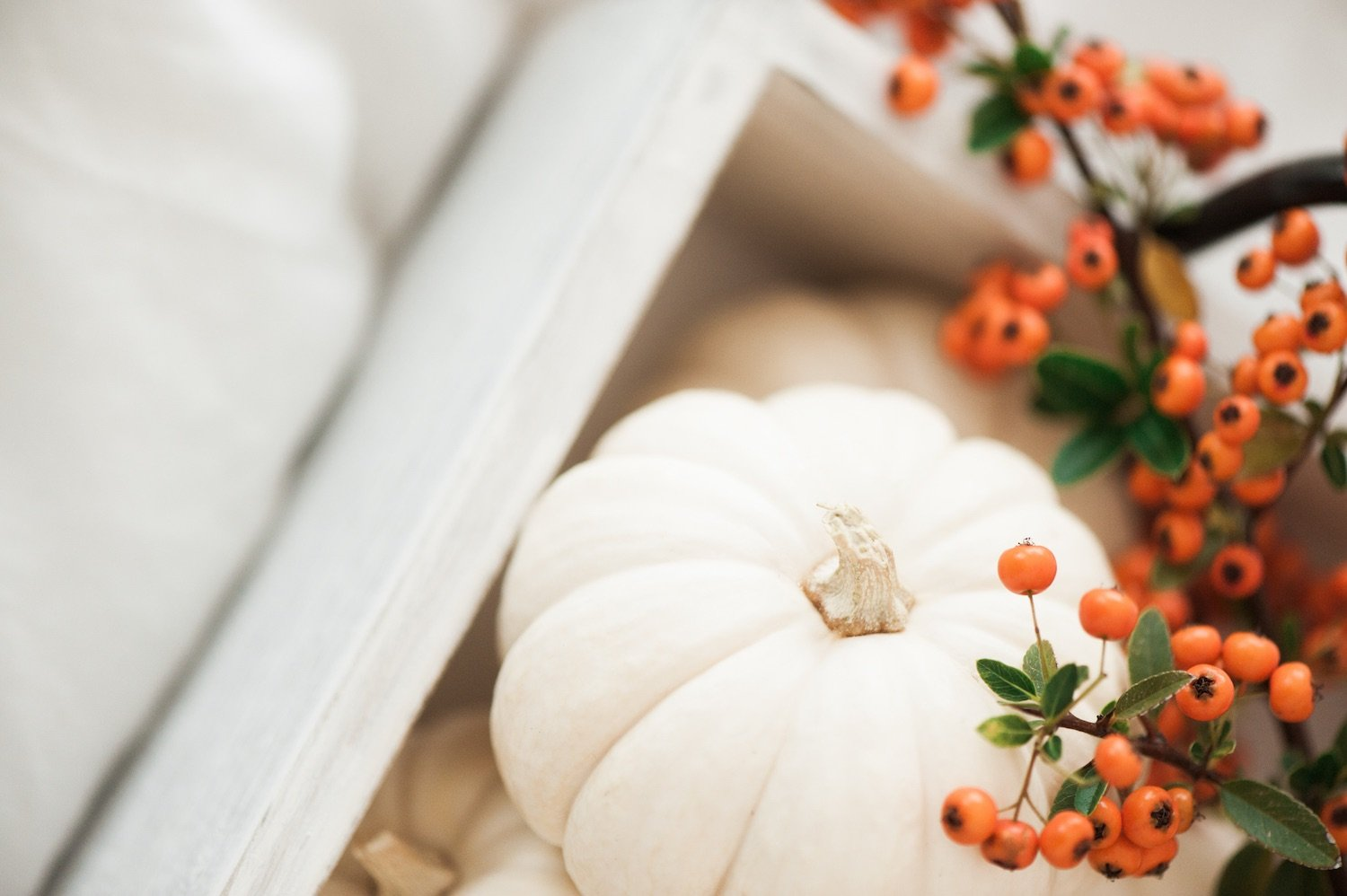 how to host thanksgiving in a small space featured image